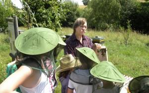 Eine Schulklasse besucht den Imker auf dem Bienenlehrpfad.