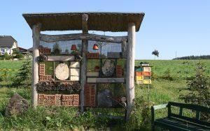 Wildbienenwand auf dem Bienenlehrpfad